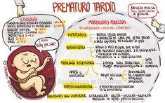 Prematuro tardío Fuente:Neonatologia en esquemas Facebook