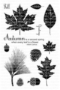 Clearly Besotted AUTUMN FLOWERS Clear Stamp Set