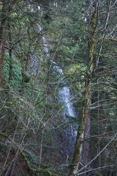 Seasonal falls along old highway 30, east of Latourell Falls, Columbia Gorge, OR.  01/2014.