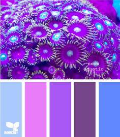 purples & blues