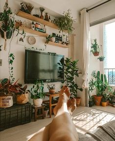 Reposted from ( - Put your feet up enjoy the view and have a fabulous weekend! by Salateando - House Plants Decor, Plant Decor, Tv Wall Decor, Plant Wall, Cozy House, Decoration, Living Room Decor, Diy Home Decor, Sweet Home
