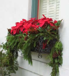 My love fro Poinsettia's is no secret, so you can imagine my gasp when I came across this lovely idea to create a Christmas window box using draping foliage, pinecones and red Poinsettia's. Winter Window Boxes, Christmas Window Boxes, Christmas Planters, Christmas Porch, Noel Christmas, Outdoor Christmas Decorations, Winter Christmas, Christmas Crafts, Holiday Decor