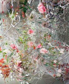 Synesthesia Garden - a weird art + style blog | » Blog Archive » Margriet Smulders' Exquisite, Paradisaical Flower Photography