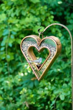 Copper heart bird feeder: I don't really like birds but I would consider putting this in my yard (maybe far away from the house :) Love Birds, Beautiful Birds, Beautiful Hearts, Dream Garden, Garden Art, Easy Garden, Unique Bird Feeders, Diy Jardin, I Love Heart