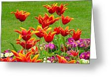 Fiery Tulips Greeting Card by Joan-Violet Stretch