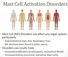 Tenacious PT: How Mast Cell Activation Disorder and Histamine Intolerance May Be Affecting Your Recovery From Lyme Disease Cidp, Mast Cell Activation Syndrome, Tricyclic Antidepressant, Tissue Types, Urticaria, Autonomic Nervous System, Ehlers Danlos Syndrome, Rare Disease, Autoimmune Disease