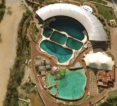 marineland antibes orca tank bulding - Google Search