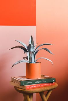 Orange Paint Colors, Orange Walls, Estilo Color Block, Wallpaper Inspiration, Behr Colors, Wall Painting Decor, Pastel Room, Pink Damask, Blog Design