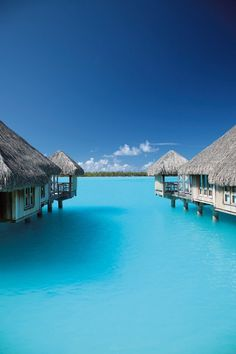 5 Luxury Travel Destinations That Are Trending This Year Bora Bora welcomes several celebs, honeymooners and of course, thrill-seekers. Vacation Places, Vacation Destinations, Dream Vacations, Places To Travel, Romantic Vacations, Italy Vacation, Romantic Travel, Dream Vacation Spots, Honeymoon Places