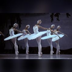 Critics' Pick Dancers of the Russian Kirov Ballet perform during a rehearsal at Taipei Theatre Hall in Taipei, southeast China's Taiwan, October 31 Shall We Dance, Just Dance, Dance Pictures, Pictures To Paint, Dance Images, Dance Photos, Ballet Dancers, Ballerinas, Ballet Beautiful