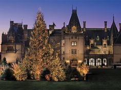 Biltmore Estate During the Holidays: must see!