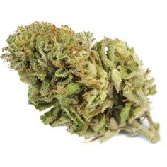 Stop on by PSHA and get 1/8th, .5 Gram BHO and a Pre Roll all for only $44! Also, All 420 Bars are %10 OFF all day today! Middlefork, Blueberry and Sour Diesel are all fresh on the shelves $10/g! From all of us at PSHA Stay Medicated!