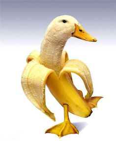 Banana Duck #banana #duck - Carefully selected by GORGONIA www.gorgonia.it