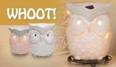 off at scentsy! I cant wait till the fall scents are out! But I LOVE this warmer! Whoot: Scentsy August Warmer of the Month Scented Wax, Scented Candles, Thing 1, Owl Always Love You, Candle Warmer, Wax Warmers, Fall Scents, Little Bit, In Kindergarten
