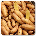 Organic Russian Banana Fingerling Potato