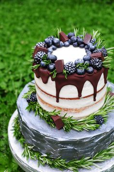 Cake decorated with blueberries, blackberries, chocolate and rosemary sprigs