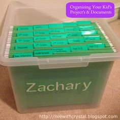 Through Crystal's Eyes: Organizing all your Kid's Stuff