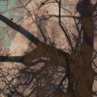 Rain9 by doris cologna sopran on SoundCloud