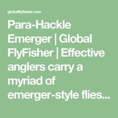 Para-Hackle Emerger   Global FlyFisher   Effective anglers carry a myriad of emerger-style flies to take picky trout during hatches.  While there are many styles of emergers to choose from, para-hackle style flies may not come to mind first. Tying emergers para-hackle style is a forgotten technique not often taught and even fished less.  We at GFF can't understand why!?!  Read along as GFF partner Steve Schweitzer walks you through the