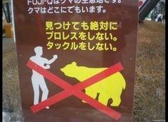 熊とプロレス及びタックル禁止