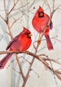 Cedar Farm Cardinals II by Maureen McCarthy | Animals: Birds ...