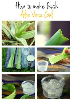 how to make fresh aloe vera gel....this will come in handy someday being we just picked up a aloe Vera plant at the farmers market!
