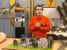 C'est pas Sorcier Au Temps des Mammouths ( partie 2 )