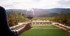 Celebrate the love of wine at HALL St. Helena