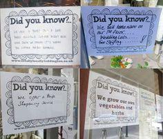 Did You Know Windows
