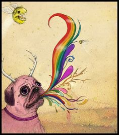 pug puking rainbows, whats not to like