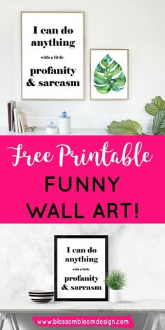 Download your free printable funny wall art print now... I can do anything with a little profanity and sarcasm! Give yourself a giggle and give your walls that cool fresh vibe. Download now or pin for later