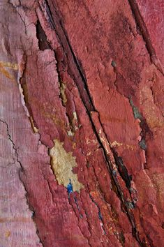 Color Trends 2019 and how to use it -Terracotta Color Trends 2019 and how to use it - Pantone color for Marsala - antelope canyon - © julien roubinet Marsala DIY Paper Marbling Physocarpus opulifollius 'Monlo' Pantone 2015, Pantone Colors 2015, Marsala, Textures Patterns, Color Patterns, Color Schemes, Terracota, Color Stories, Color Of The Year