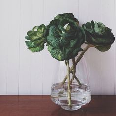 Unique Arrangement: Ornamental Cabbage