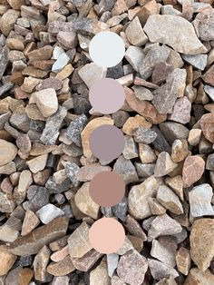 Earthy, neutral color palette inspired by landscaping rocks. Subtle purples and pinks. Earthy Color Palette, Color Palate, Neutral Colour Palette, Colour Schemes, Color Combos, Landscaping With Rocks, Colour Board, Color Theory, Color Inspiration