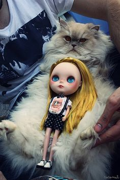 I don't really care for this doll, but the picture is hilarious.