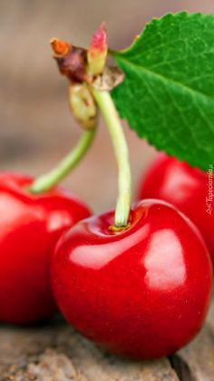 free computer wallpaper for cherry Fruit And Veg, Fruits And Vegetables, Fresh Fruit, Cherry Fruit, Photo Fruit, Fruit Picture, Fruits Photos, Fruit Photography, Iphone Photography