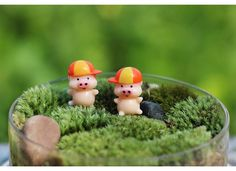 Miniature Pigs w Hat Terrarium Fairy Garden by SCMiniatureSupplies