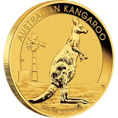 A kangaroo is the most instantly recognisable wildlife symbol of Australia. In 2014.