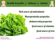 Lettuce in baby food