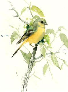 Bird artwork, American Goldfinch female, original watercolor art, 12 X 9 in, olive green brown wall art by ORIGINALONLY on Etsy