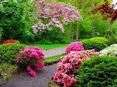 Resultado de imagem para imagens bonitas da natureza
