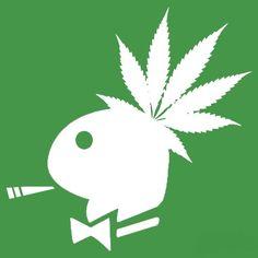 Weed Backgrounds, Estilo Tim Burton, Marijuana Art, Marijuana Funny, Medical Cannabis, Rasta Art, Stoner Art, Weed Art, Weed Humor