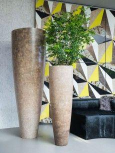 Monolithic in Presence - Dynamic in Nature Indoor Trees, Indoor Plants, Flower Vases, Flower Pots, Exposed Brick Kitchen, Vase Crafts, Big Plants, Container Flowers, Wood Bowls