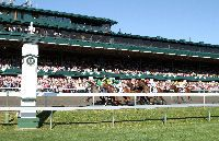 KEENELAND: who wouldn't want to be in a college town that has it's own horse race track?! love the fall and spring season, dressing up, floppy hats, mint juleps, & placing bets :)