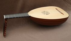 Gallery of lutes and guitars