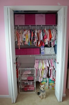 closet organizer with drawers and rods for babies | Baby Closet Organizer: Magnificent Pink Baby Closet Organizer ...