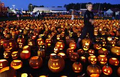 A boy finishes lighting a patch of jack-o-lanterns at the Camp Sunshine Maine Pumpkin Festival.