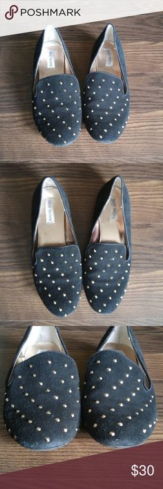 Steve Madden Studded Loafer Flats Steve Madden black suede leather loafer flats with gold studs. Steve Madden Shoes Flats & Loafers