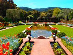 Filoli gardens, Woodside, CA in beatiful spring bloom