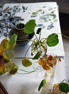 Cressida Campbell - The Design Files The Design Files, Blog Design, The Artist's Way, Watercolor On Wood, My Art Studio, Australian Artists, Bouquet, Culinary Arts, Botanical Illustration